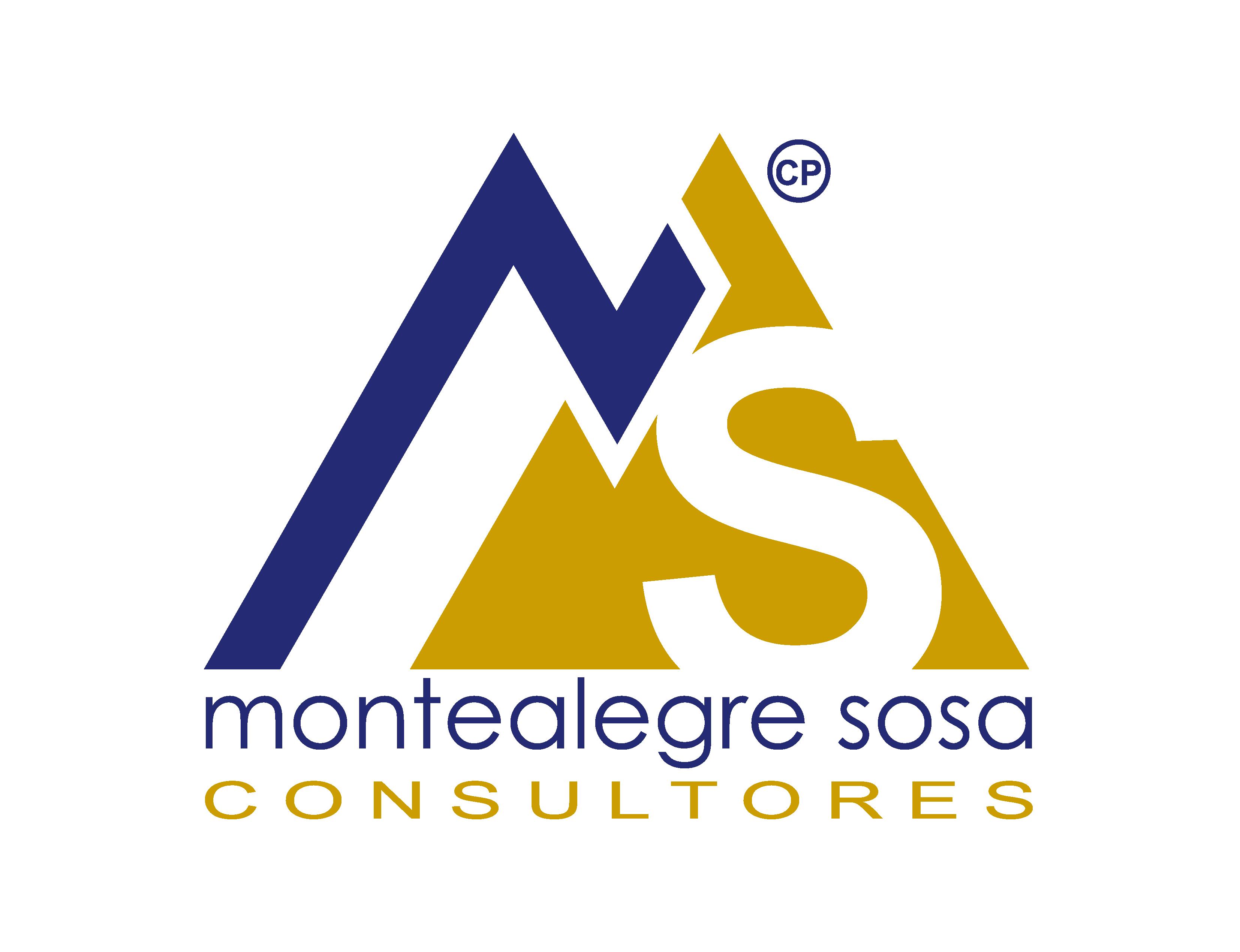 Montealegre Sosa Consultores